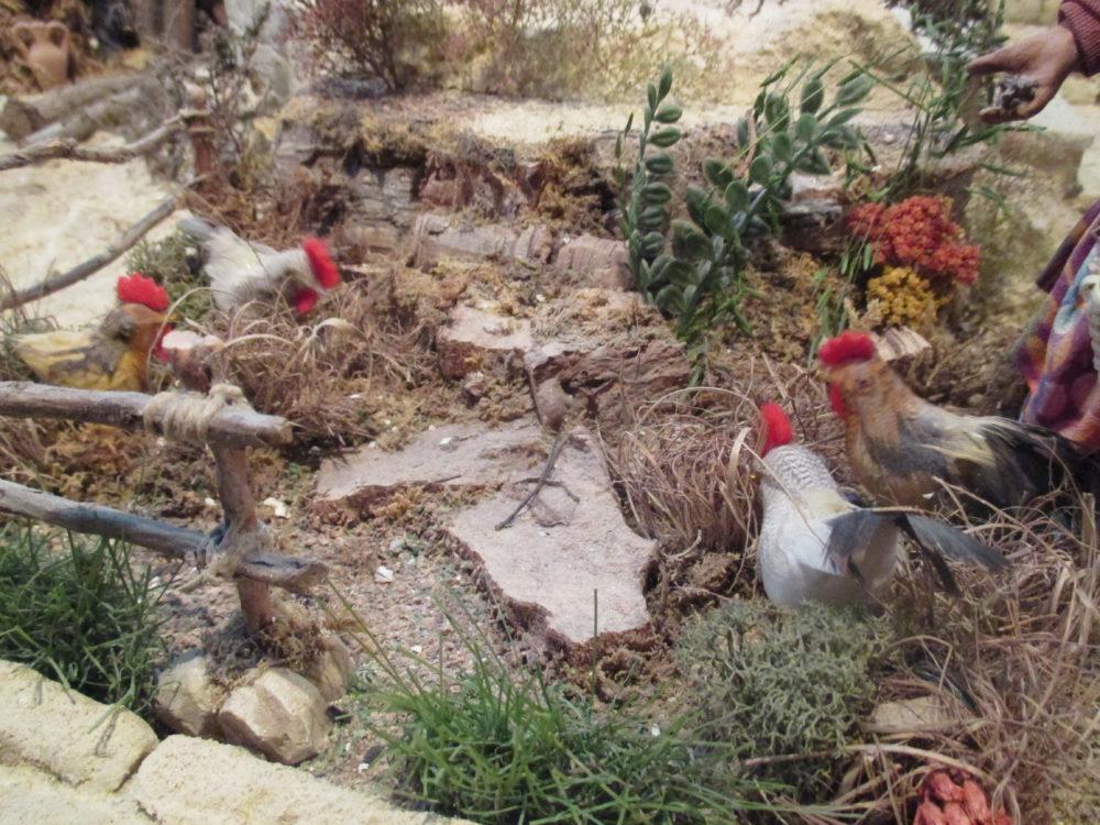 Presepe di Traversagna, - Le galline