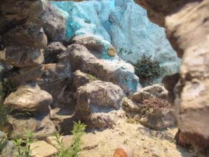 Presepe di Traversagna - Le rocce