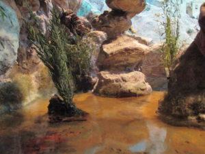 Presepe di Traversagna - Lo stagno
